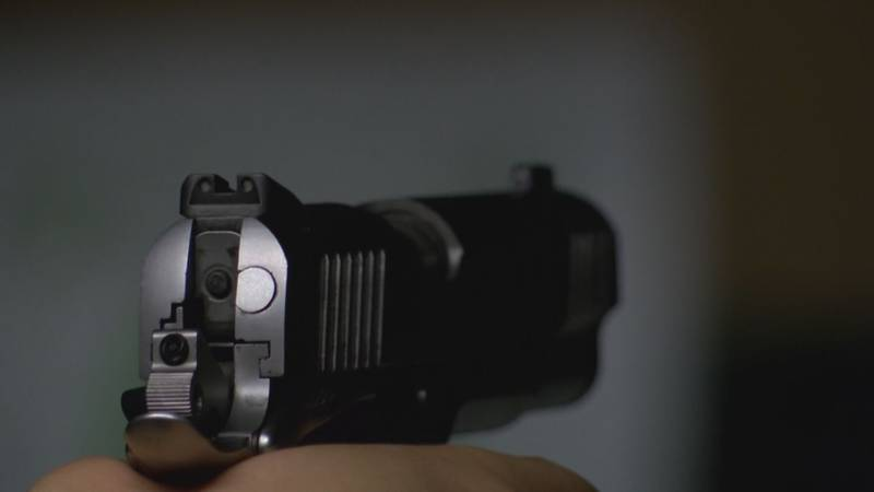 Across the state, schools reported an increase number of weapons in the 2018-19 school year,...