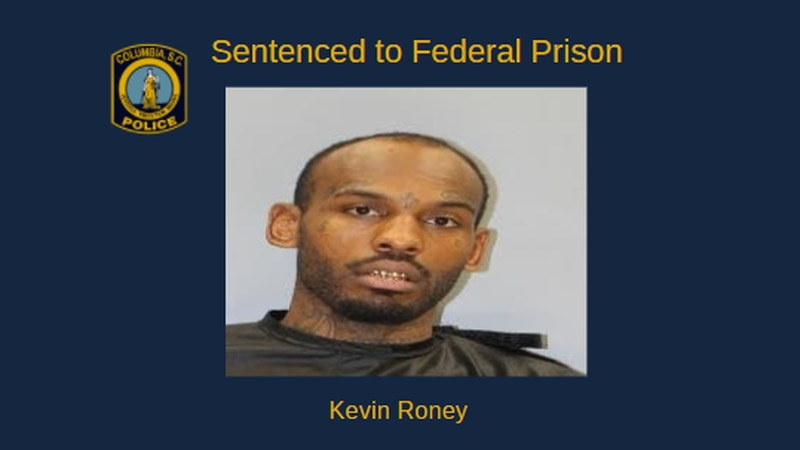 Man sentenced to 30 months on gun charges