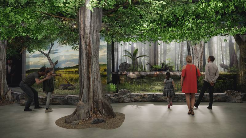 This is a rendering of what part of the new Riverbanks Zoo Aquarium & Reptile Conservation...