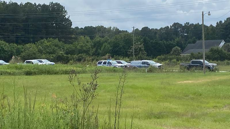 A police chase ended in a deadly crash Friday in Florence County.