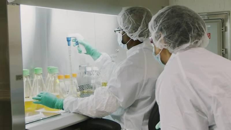 Drug maker Pfizer hopes to be able to seek emergency use authorization of its coronavirus...