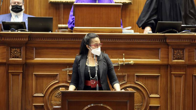 State Sen. Mia McLeod, D-Columbia, speaks about a bill that would ban almost all abortions in...