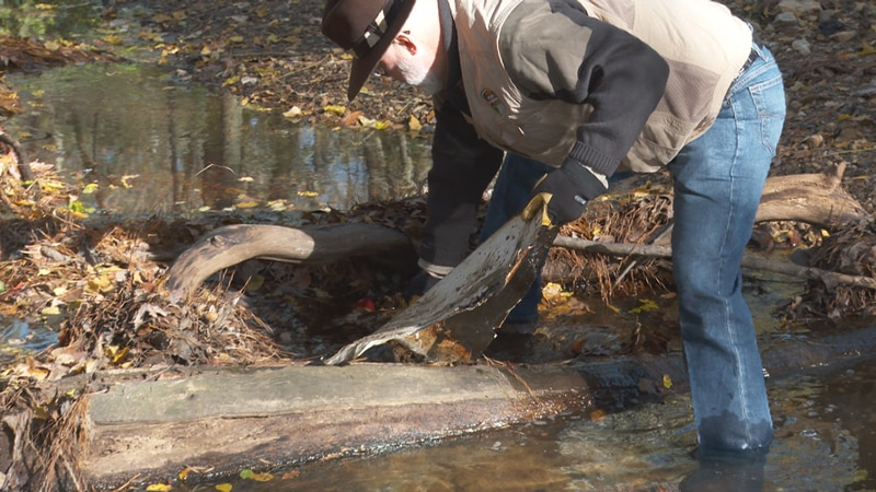 On one morning stroll along the creek, Mullikin and Blue Granite employees found old road...