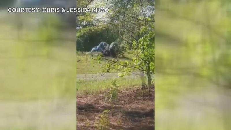 Good Samaritan help Marshall County deputy arrest suspect.