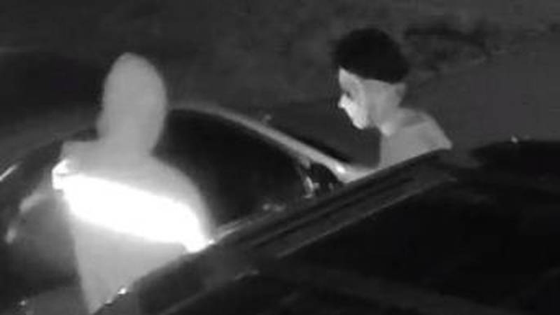 Cash, credit cards and more were stolen from multiple cars on Beechfern Circle over the holiday...
