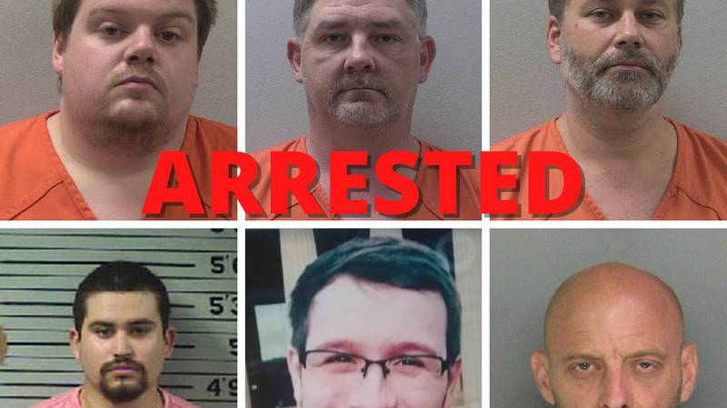 17 arrests were announced last month after an online operation including more than a dozen law...