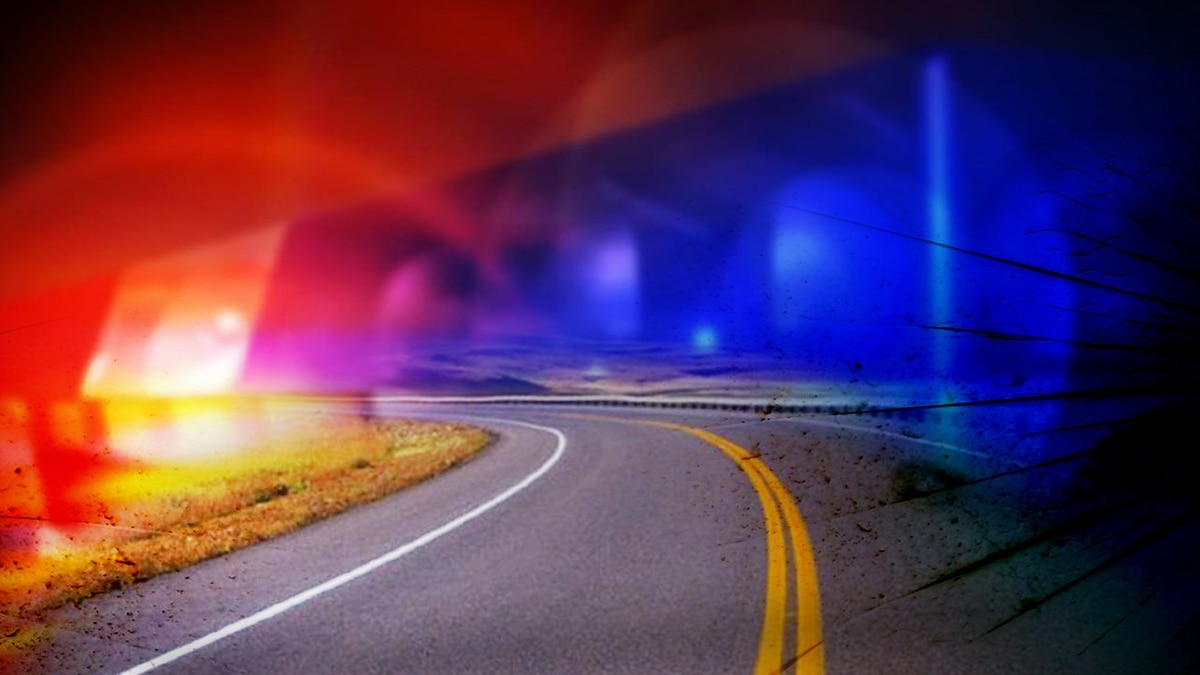 The wreck happened Friday night near the Trenholm Road Extension intersection.
