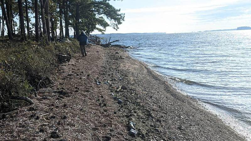 The Lakeside Litter Sweep on Lake Murray is September 18th from 9 a.m. to 12 p.m.