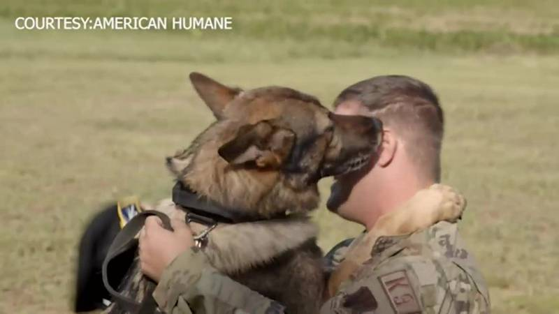 After an eight-month wait, an Air Force sergeant reunites with K-9 partner from South Korea.