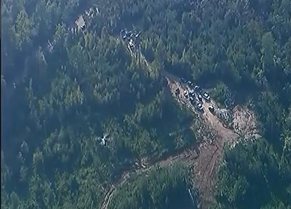 An aerial shot of the area where the bodies were found in Wilcox County, AL (Source: WSFA)