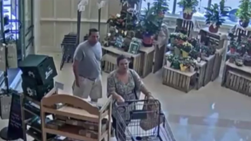 Lexington Police are looking for this pair who stole medicine from Lowes Foods. (Lexington...