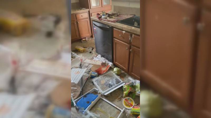 House guests leave thousand of dollars in damages